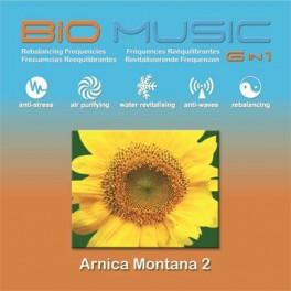 Arnica Montana 2